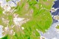tomato2_zoom1_0522_ndvi