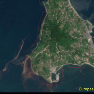 松山市興居島Sentinel-2画像[撮影:7月13日/カラー:RGBコンポジット]