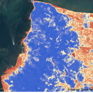 松山市高浜付近Sentinel-2画像[撮影:6月13日/カラー:NDVI(赤→青)]