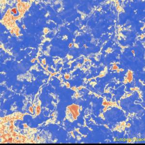 松山市西谷付近Sentinel-2画像[撮影:6月13日/カラー:NDVI(赤→青)] NDVIが極端に低い箇所が発生している
