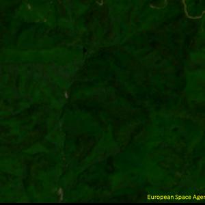 宇和町下川の滝山川上流Sentinel-2画像[撮影:6月13日/カラー:RGBコンポジット]