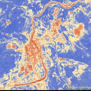 野村町野村付近Sentinel-2画像[撮影:7月13日/カラー:NDVI(赤→青)] 河川のNDVIが低減している