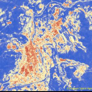 野村町野村付近Sentinel-2画像[撮影:6月13日/カラー:NDVI(赤→青)]